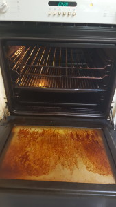before Newcastle Oven Cleaning Photos